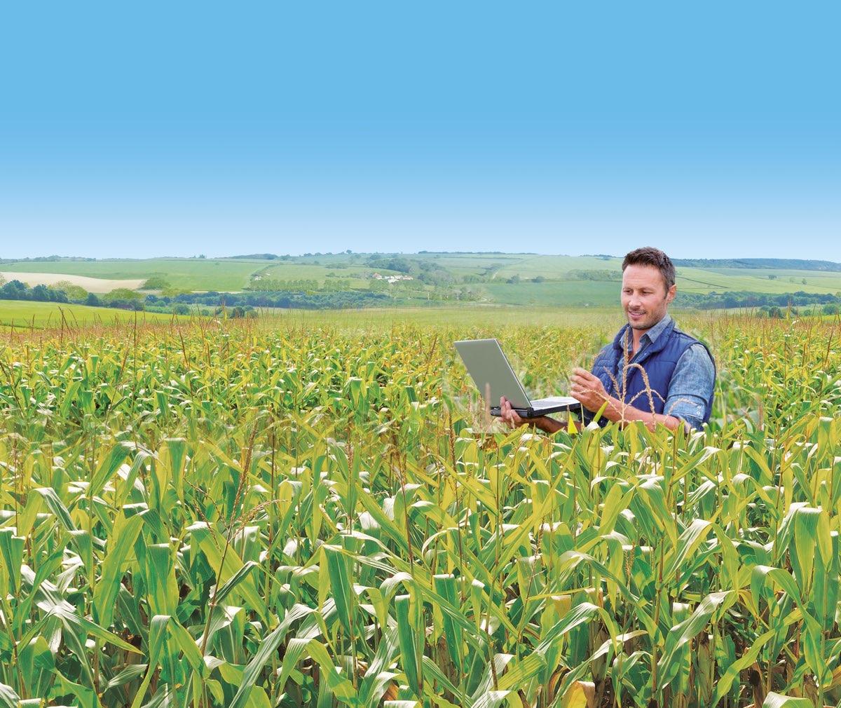 En bon conseiller, l'UCAL oriente l'expérimentation et le développement technologique des exploitations agricoles pour les rendre plus profitables.