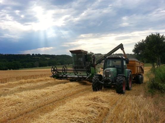 Créée il y a plus de 25 ans, l'Union des Coopératives Agricoles de l'Allier (UCAL) soutient les coopératives et les aide à dégager de la valeur ajoutée.
