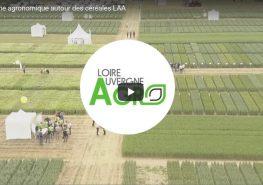 Film plate-forme essai 2017 Loire-Auvergne-Agro - agroécologie