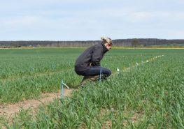 Visite d'essais UCAL et Loire Auvergne Agro - printemps 2018