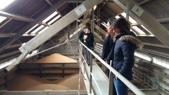 Visite Groupe Nicot - silo gannat